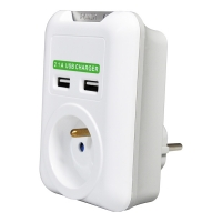 ROLINE Power Wall Outlet, 2x USB Charger, UTE version