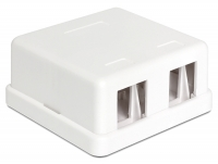 Delock Keystone Surface Mounted Box 2 Port