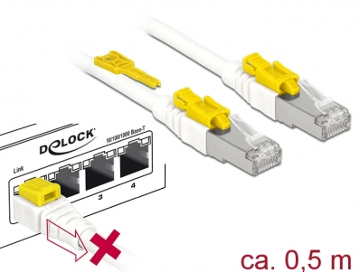 Delock Cable RJ45 Secure Cat.6A 0.5 m