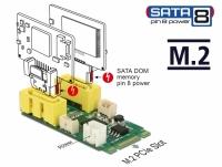 Delock Converter M.2 Key B+M male > 2 x SATA pin 8 power plug