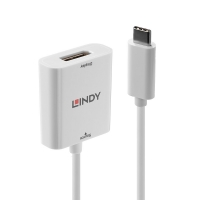 Lindy USB 3.1 Type C to DisplayPort Converter