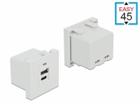 Delock Easy 45 USB Charging Port Module 1 x Type-A + 1 x USB Type-C™