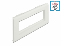 Delock Easy 45 Module Holder for installation trunking 175 x 80 mm