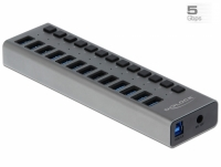 Delock External SuperSpeed USB Hub with 13 Ports + Switch